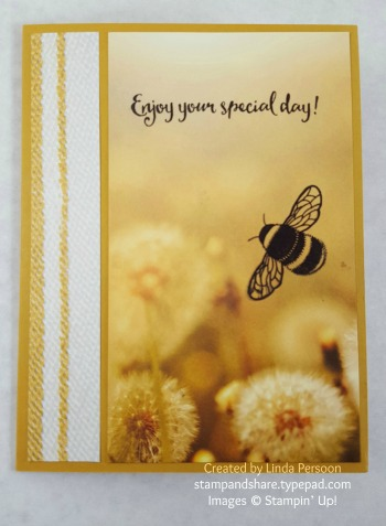 Serene Scenery Designer Series Paper Card with Dragonfly Dreams by Linda Persoon stampandshare.typepad.com