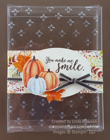 Painted Autumn Acetate Gift Box with Sparkle Textured Impressions Embossing Folder by Linda Persoon stampandshare.typepad.com